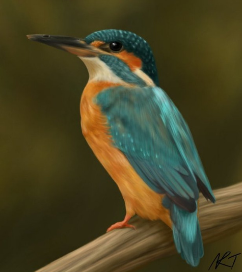 Digital painting of a kingfisher
