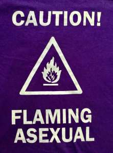 The white design on a purple t-shirt, top: 'Caution!', middle: A fire symbol in a warning triangle, bottom: